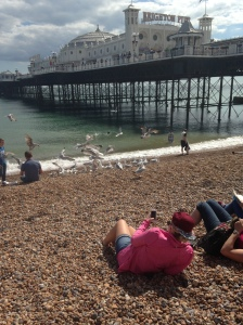 Seagulls attacking a family who thought it was a great idea to try and feed them...